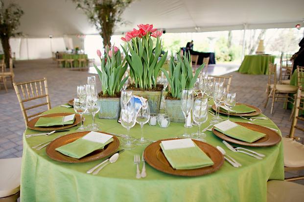 Apple Dupioni Table Linen, Green Dupioni Table Cloth