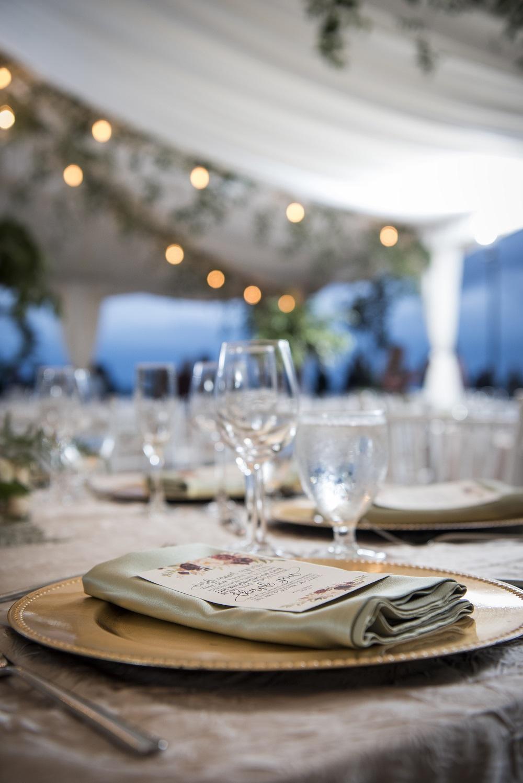 Champagne Crush Table Linen, Sage Lamour Napkin